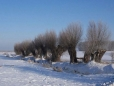 titel-winter