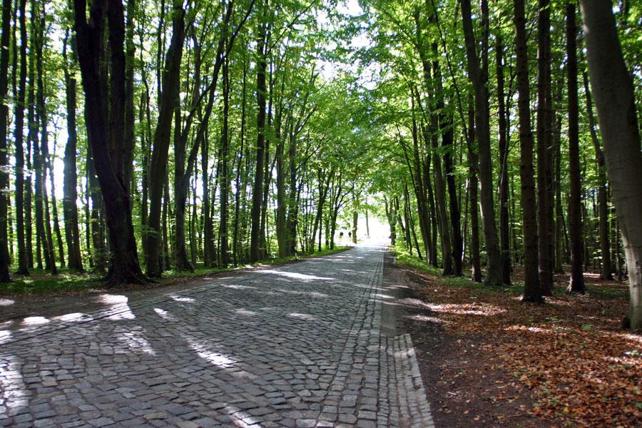 Alleenstraße