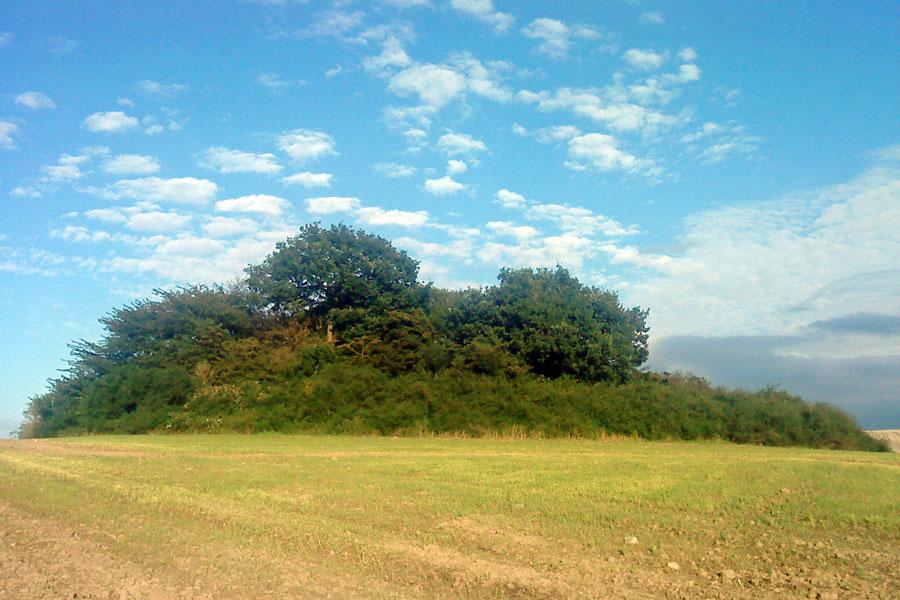Dobberworth - Bild von Wikipedia Släpperöd