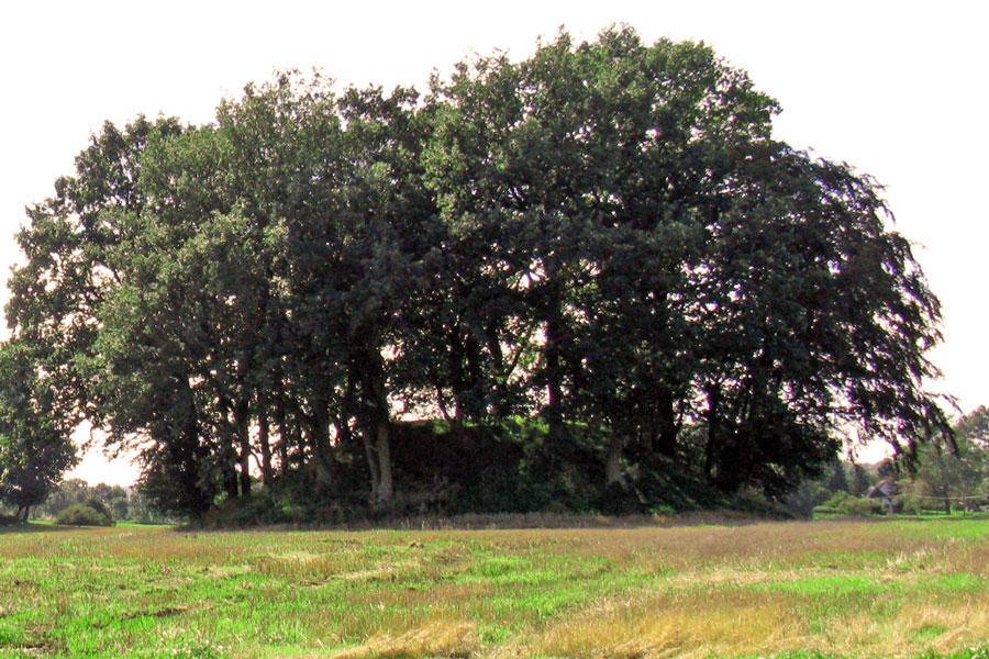 """Hügelgrab """"Woorker Berge"""""""