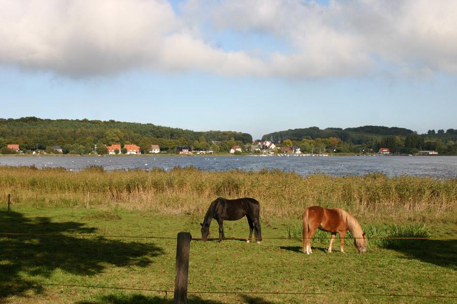 Selliner See - im Hintergrund Sellin