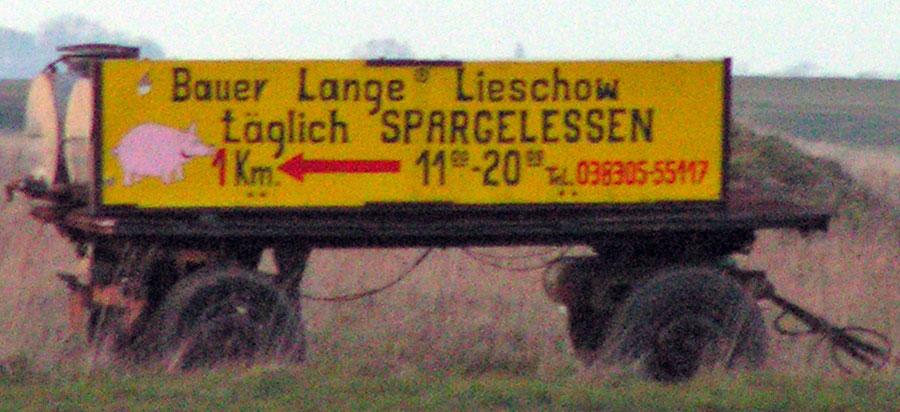 Bauer Lange