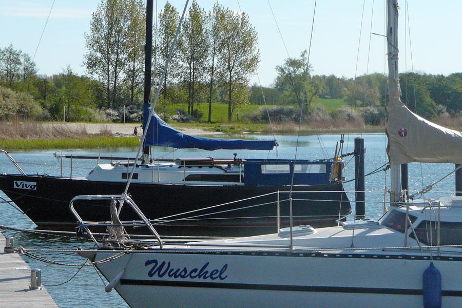 Segelboote am Naturhafen Gustow