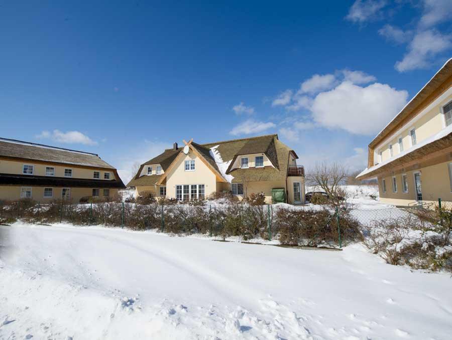 Reethaus Boddenblick in Alt Reddevitz im Winter